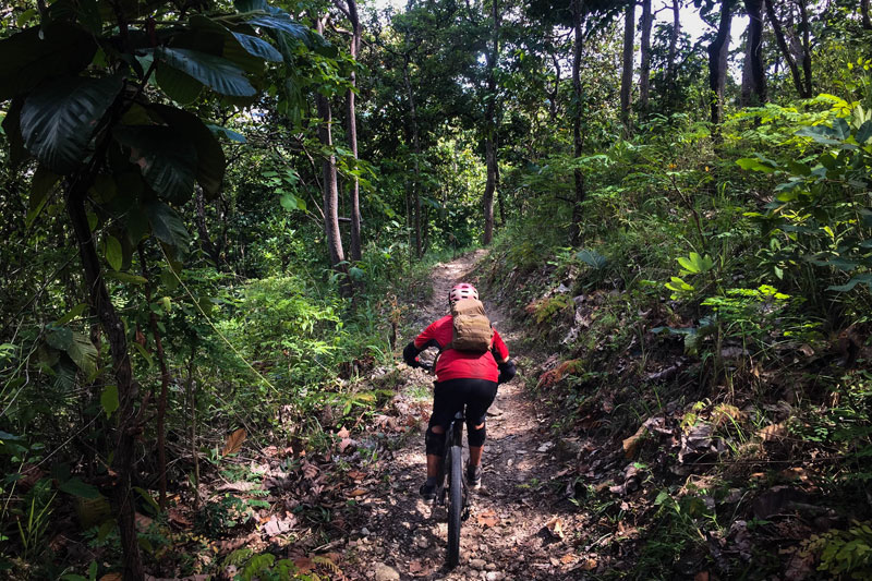 Mountain Bike Tour Chiang Mai