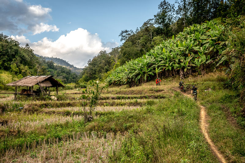 3 Day Mountain Bike Tour Chiang Dao