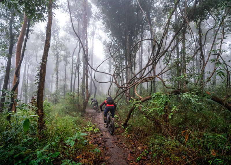 Amazing Trails in Chiang Mai