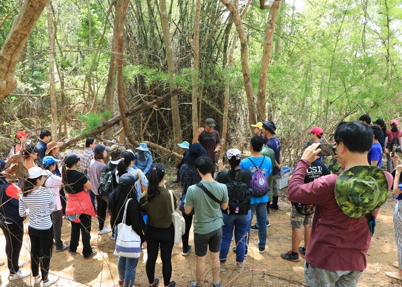 Chiang Dao Tree Planting