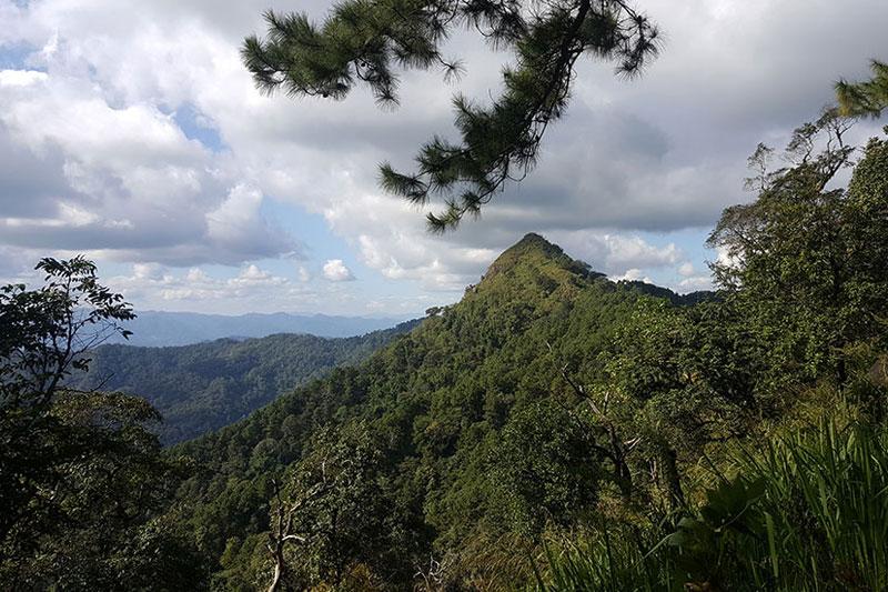Mountain Chiang Mai