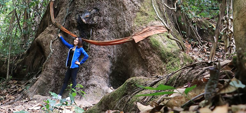 mae-kampong-nature-hike